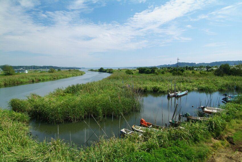 茨城県大洗 涸沼