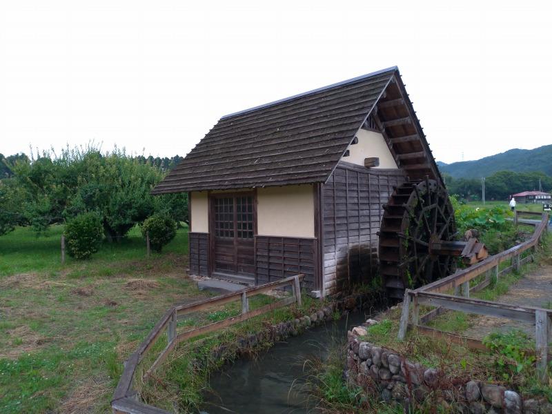 巾着田キャンプ場周辺の水車