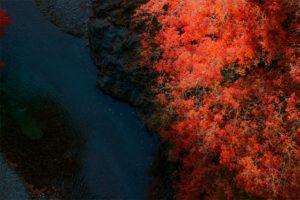 奥多摩_鳩ノ巣渓谷の紅葉 (1)