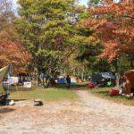 茨城無料キャンプ場