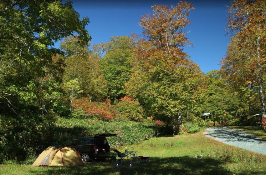 群馬県自然の森(奥利根水源の森)野営場